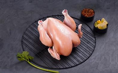 Chicken Tandoori Spring Bird